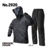 No.2920 レッヂレイン